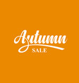 autumn sale calligraphic text vector image vector image