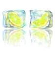 frozen lemon slice vector image vector image