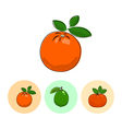 Fruit Icons Orange Lime Mandarin vector image vector image