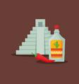 mexican pyramid design vector image vector image