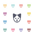 puppy flat icons set vector image vector image