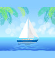 sailboat isolated on clean water in summertime vector image