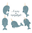 set of cute with narwhal baby vector image