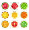 sliced tropic fruit set collection of round vector image
