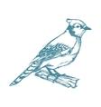 bird on branch sketch blue vintage vector image vector image