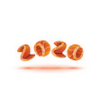 happy new year 2020 text design salmon style vector image