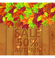 autumn leaves on a wooden background vector image vector image
