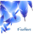 Background with blue feathers vector image