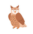 cute brown owl sitting with folded wings isolated vector image