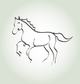 Horse minimal line style vector image vector image