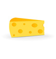 Swiss Cheese Isolated on White Background vector image