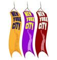 banner design for new york city vector image