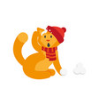 flat cat character making ice balls vector image