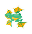 frog cartoon tropical green animal cartoon nature vector image vector image