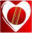 love cricket vector image vector image