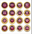 luxury sale gold and purple labels collection vector image vector image