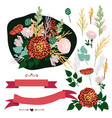 set design elements floral borders vector image
