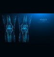 abstract polygonal human knee anatomy x-ray vector image vector image