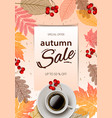 autumn sale fall season sale and discounts banner vector image vector image