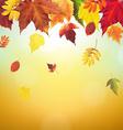 Autumn Vintage Border vector image vector image