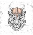 hipster animal cheetah wearing a viking helmet vector image