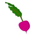 radish icon flat style vector image vector image