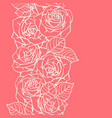 seamless pattern with outline roses beautiful vector image vector image