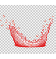 Transparent water splash vector image vector image