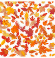 background of colored wet autumnal maple leaves vector image vector image