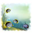 background underwater world vector illustration vector image