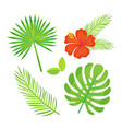 floral decoration tropical leaves and foliage vector image vector image