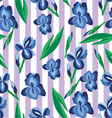floral pattern with irises on the stripe vector image vector image