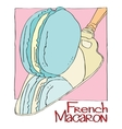 French Macaron vector image vector image