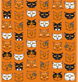 funny cats muzzles vector image