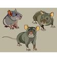 pretty small rats vector image vector image