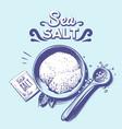 sea salt hand drawn salting crystals sodium vector image vector image