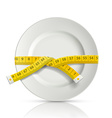 tailor centimeter around the plate vector image vector image