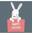 Cute bunny holding banner vector image