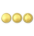 3d realistic golden metal blank coin icon vector image vector image