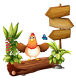Arrow boards with a hen and a butterfly vector image vector image
