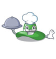 chef with food beach hat isolated in the with vector image vector image