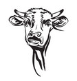 cute funny abstract portrait bull vector image vector image
