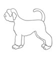 giant schnauzer contour isolated on white vector image