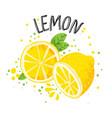 hand draw lemon half and vector image vector image