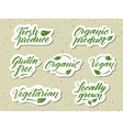 Hand drawn healthy food letterings Label logo vector image vector image