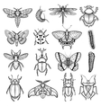 insects black white line icons set vector image