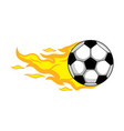 isolated soccer ball with a fire effect vector image