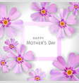 mothers day greeting card with flowers of phlox vector image