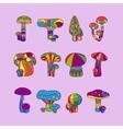 Psychedelic mushrooms or hallucinogenic fungus vector image