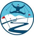 ski track logo vector image